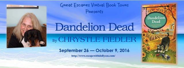 dandelion-dead-book-tour-large-banner640